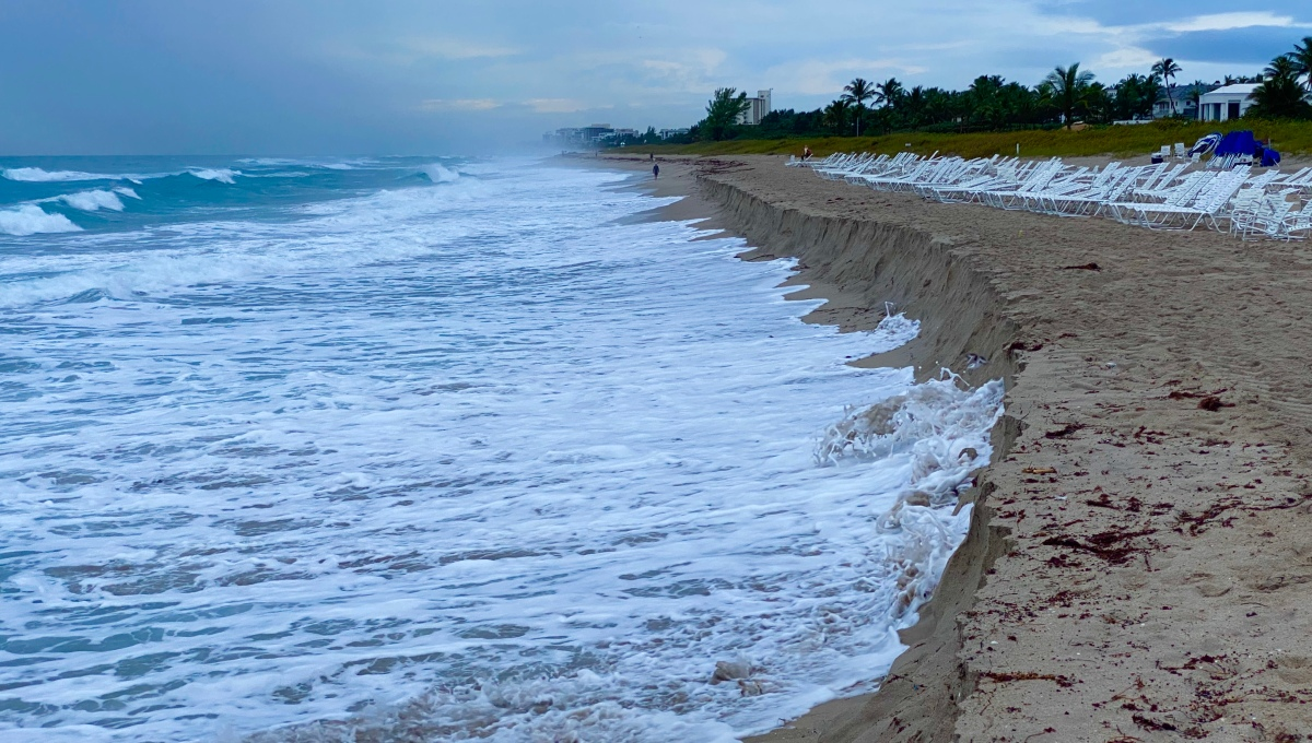 Does Your State Require Real Estate Sellers to Disclose Sea Level RiseFlooding?
