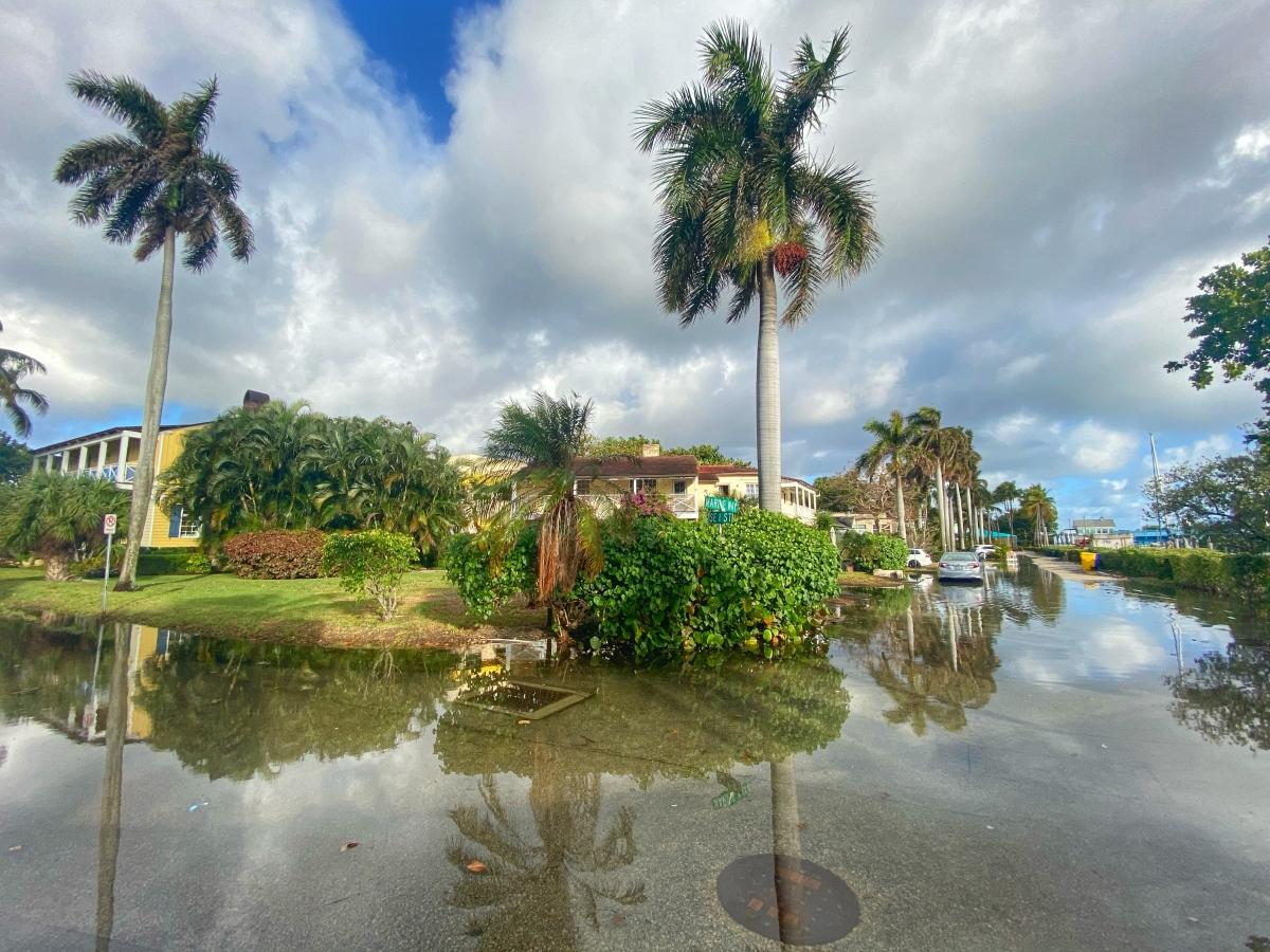 Florida Bill Would Establish State-level Coordination of Sea Level RiseResponse