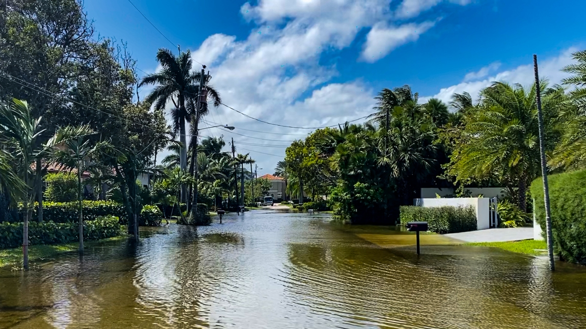 NPR Shines a Spotlight on the Government's Failure to Require Sellers to Disclose Sea Level Rise Flooding Risks