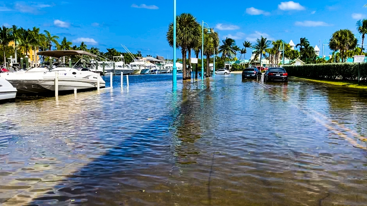 Florida's State Government Does a 180 on Sea Level RiseFlooding